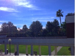My daydreaming view from my office.